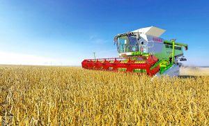 Агробізнес «Епіцентр К» планує збільшити площі під соєю в 10-12 разів